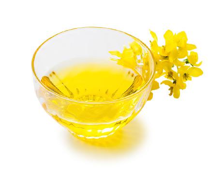 鹿北製油×amritara foods なたね油・えごま油・黒ごま油